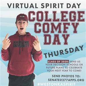 Virtual Spirit Day example